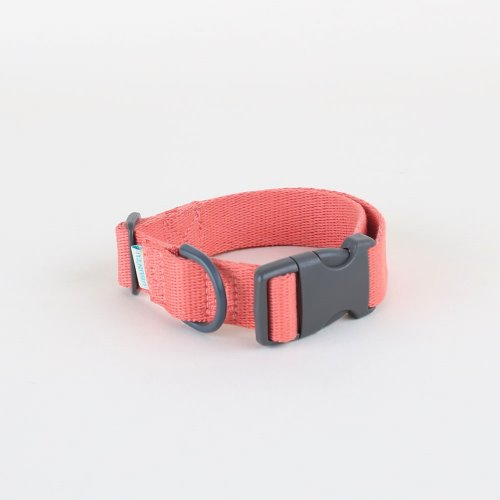 Daily collar _ living coral